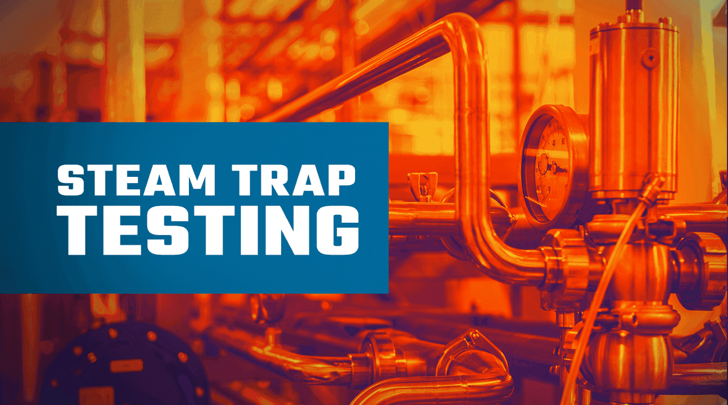 Steam Trap Testing with Infared and Ultrasound Devices